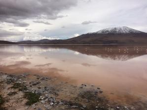 Altiplano lagoon, Bolivia
