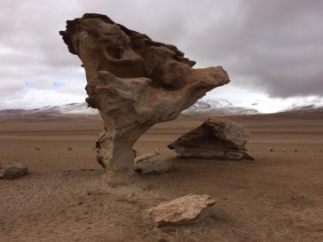 Tree Rock, Atacama Desert, Bolivia