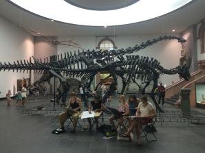 Naturmuseum Senckenberg, Frankfurt