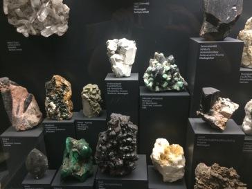 Frankfurt Natural History Museum