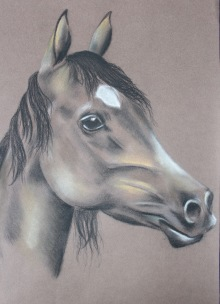 Horse drawn in pastel