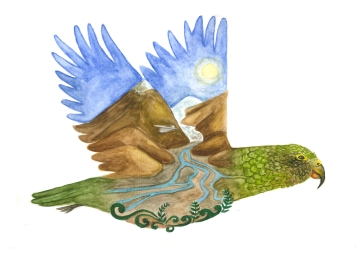 Kea, watercolour