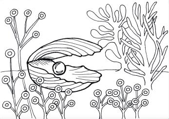 Oyster, pen & ink