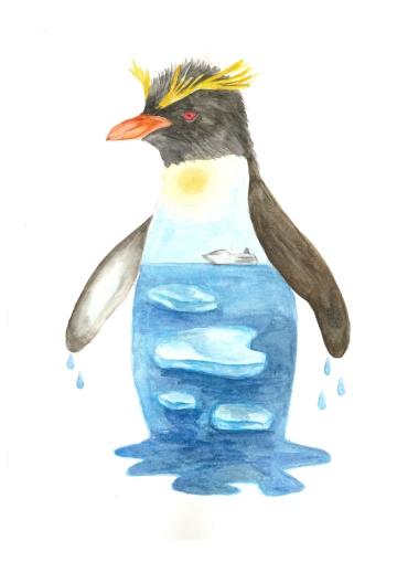 Rockhopper penguin, watercolour